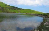 Lake BAP Wales Icon